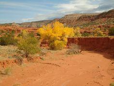 Jemez Valley, New Mexico