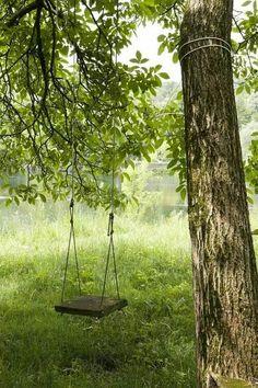 Tree swing :-)