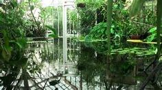 conservatory with plants and water - Bing