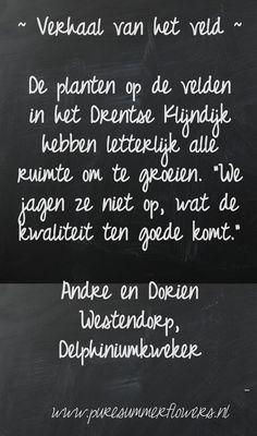 Kort verhaal over zomerbloemen. Quote Delphiniumkweker.    This quote courtesy of @Pinstamatic (http://pinstamatic.com)