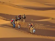 To enjoy a Camel ride amidst the huge expanse of the desert, Sahara is the best place to enjoy. visit our website at www.morokotour.com