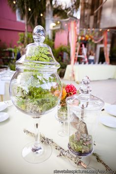 Apocathery jars aren't just for the candy bar, use them as centrepieces for the table too