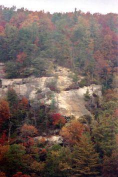 Red River Gorge- Kentucky