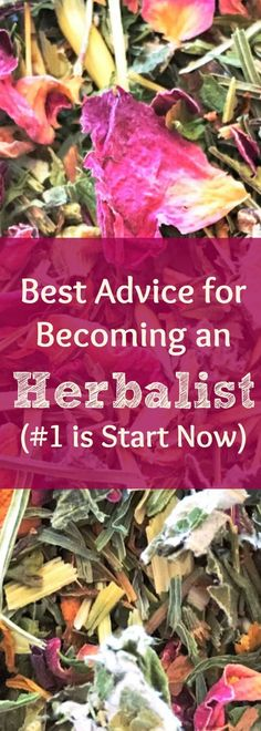 How to become an herbalist. Best advice from an herbalist on how to become a career or community herbalist. How to get started in your herbal career. How to get started learning about herbs! Find out my 8 best tips for learning herbalism.