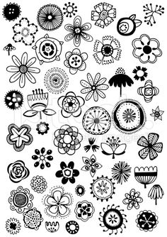 Hand drawn doodle flowers, black and white vector illustration.