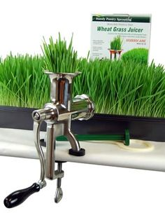 Hurricane Juicer: Manual Stainless Steel Wheatgrass Juicer