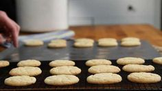 Easy Sugar Cookies Video