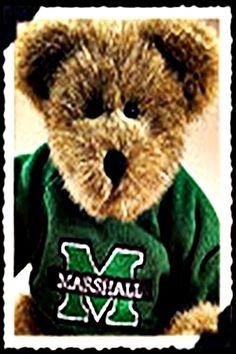 Spirit Bear   Marshall University