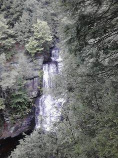 Bushkill fall