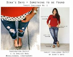 Dina's Days + Something To Be Found Thrift Challenge No. 1