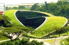NTU, NanYang Techological University Singapore. Green Roof Art School in Singapore