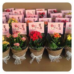 Succulent Party Favors, Garden Party Favors, Succulent Gifts, Wedding Party Favors, Fall Flower Arrangements, Bridal Shower, Baby Shower, Crepe Paper Flowers, Burlap Flowers