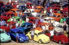 volkswagen Beetles red, yellow, blue, orange, denim blue, white
