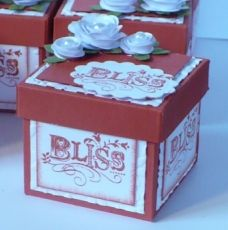 tea light boxes for a bridal shower - how to is on the site