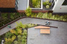 300 Ivy Residential Housing by Fletcher Studio 01 « Landscape Architecture Works   Landezine