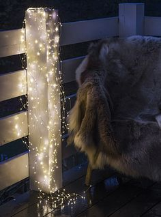 "Fur with Sirius string lights. An easy and beatiful way to decorate your terrace, with Sirius string lights ""knirke""."