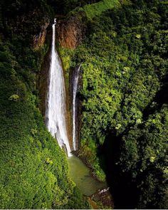 Jurassic Falls, Kauai, Hawaii — Photography by @thebeardeddream