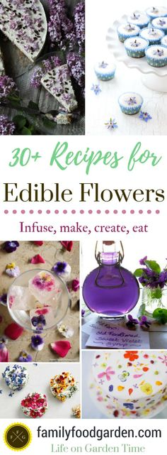 Edible flowers for cakes, homemade beauty care products, flowers for medicine or edible flowers for a salad. List of edible flowers that can be make into syrups, wines, infused into oils or vinegars or used in kitchen recipes. Here's a list of edible blooms and recipes for how to use them