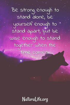 Be Strong Enough To Stand Alone, Be Yourself Enough to Stand Apart, but be wise enough to stand together when the time comes. Inspirational quote
