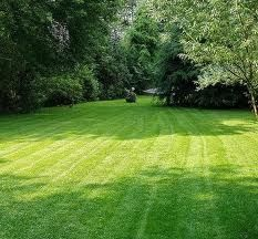 Pinstrosity: Salted Lawns