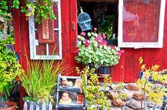 2014 BBY - Dennis' garden