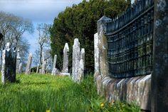 Abbeyshrule Graveyard, Abbeyshrule, Co. Longford, Ireland.