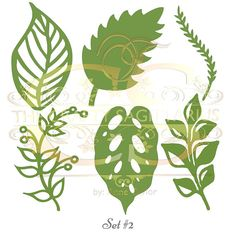 THIS ARE LEAVES TEMPLATES ONLY. This is an SVG FILE!!! NOT APPLICABLE FOR TRACE AND CUT A file to use in cutting machines. This is not the file for trace and cut purposes. This Listing is for LEAVES ONLY intended to add texture and interest to you Paper Flowers and Arrangements. NO