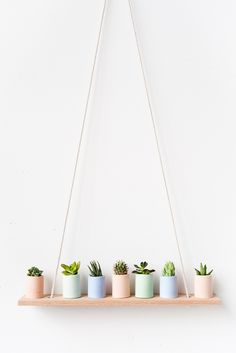 light pastel colors for potted plants