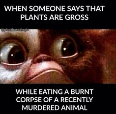 Vegan Truth... Food for thought! When someone says that plants are gross while eating a burnt corpse of a recently murdered animal.