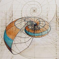 Coloring Fibonacci In Nature Fresh Rafael Araujo Draws Perfect Illustrations by Hand Using Fibonacci In Nature, Spirals In Nature, Fibonacci Spiral, Fractals In Nature, Geometric Artists, Geometric Shapes, Geometry Art, Sacred Geometry, Geometry Tattoo