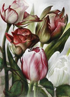 ), Stillleben mit Rosen un… Tulip Painting, China Painting, Botanical Illustration, Botanical Prints, Big Flowers, Beautiful Flowers, Watercolor Flowers, Watercolor Paintings, Wildflower Drawing