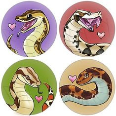 Ball python, Gaboon Viper, Red Tail Boa, and Kenyan Sand Boa from the looks of it. These are lovely.