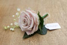 Dusky pink buttonholes