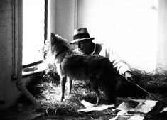 When Joseph Beuys Locked Himself in a Room with a Live Coyote One day in Joseph Beuys arrived in New York, where he was bundled in felt and delivered to a SoHo gallery. There, awaiting the artist, was a live coyote. Country Contemporary Decor, Joseph, Fluxus, Ecology, Installation Art, Magick, Graphic Art, Art Gallery, Creatures
