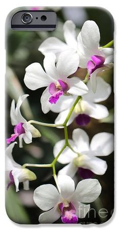 Cascading Orchid iPhone 6 Case