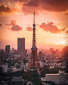 Visit Japan: Have questions about your upcoming trip to Japan? Add them in the comments below… Holiday Destinations, Travel Destinations, Visit Japan, Japan Travel, Travel Photos, Paris Skyline, Travel Inspiration, Tokyo, Explore