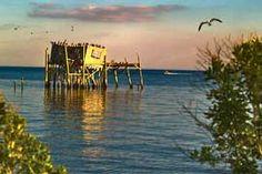 Cedar Key Florida Visitor Guide - Travel, Lodging, Tourism Guide to Florida's Nature Coast Islands