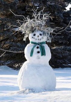 All natural hairdo adds interest to this snowman. – title Bad Hair Day – by Mike… – Winterbilder Snow Much Fun, I Love Snow, I Love Winter, Winter Fun, Winter Snow, Winter Time, Winter Green, Noel Christmas, Winter Christmas