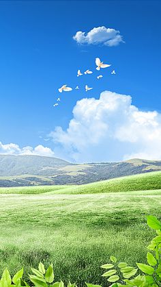 This graphic is about spring, blue sky, birds, sunshine and green grass land. More free backgrounds download from pngtree.