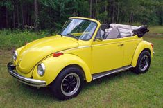 Volkswagen Convertible, Beetle Convertible, Classic Car Show, Classic Cars, Auto Body Work, Vw Cabrio, Vw Super Beetle, Vw Beetles, Classic Trucks