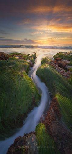 Serpent Run   Sunset, California, USA    by Michael Shainblum