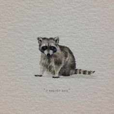 Day 223 : Raccoon! Happy birthday