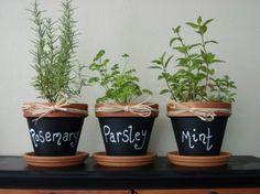 Sulla vernice effetto lavagna i nomi delle piante aromatiche, tanto per non sbagliarsi