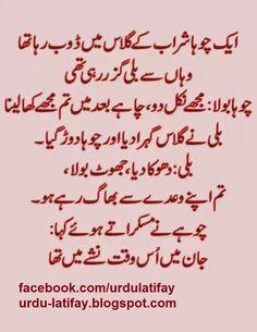 Urdu Latifay: Bili aur Choha Sharab Urdu Latifay Cat & Mouse Jokes in Urdu with Wine 2014 Latest Cute Jokes, Funny School Jokes, Very Funny Jokes, School Humor, Urdu Funny Poetry, Best Urdu Poetry Images, Jokes Quotes, Funny Quotes, Friend Jokes