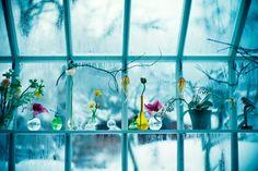 Flowers and Lifestyle ♥ Цветя и синьо вдъхновение | 79 Ideas