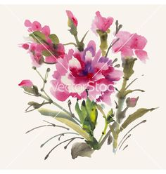 Watercolor flowers vector 4295874 - by tiff20 on VectorStock®
