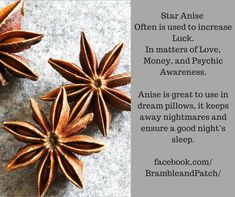 Magical uses for Star Anise. Bramble and Patch a place to find supplies. Magic Herbs, Herbal Magic, Healing Herbs, Medicinal Herbs, Magick Spells, Witchcraft, Good Luck Spells, Witch Spell Book, Witch Herbs