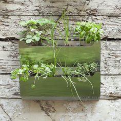 modular herb garden ~ by shift space design