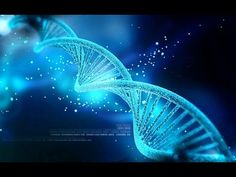 Only percent of human DNA is function, according to a new study. These findings suggest that majority of the human genome is so-called junk DNA. Dna Tattoo, Tattoos, Human Dna, Human Genome, Human Embryo, Human Body, Art Adn, Dna Kunst, Nathalie Simon