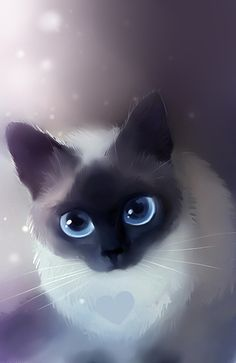 Siamese Cat by Rihards Donskis